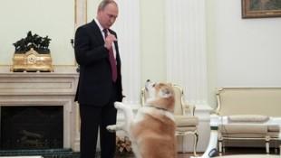 Alles hört auf sein Kommando - wie lange noch? Kremlchef Putin. (Bild: AFP)