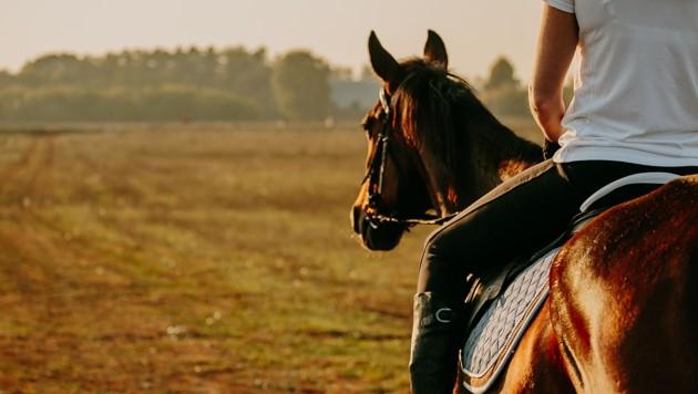 Symbolbild (Bild: stock.adobe.com, Krone KREATIV)