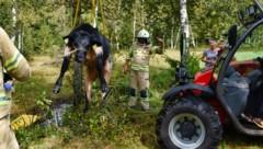(Bild: Feuerwehr Kitzbühel)