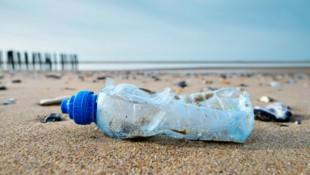 Ein Problem auf der ganzen Welt: Plastikmüll in der Natur (Bild: ©Image'in - stock.adobe.com)