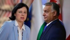 Ungarns Regierungschef Viktor Orbán hat den Rücktritt der Vizepräsidentin der EU-Kommission, Vera Jourová, verlangt. (Bild: APA, Krone KREATIV)