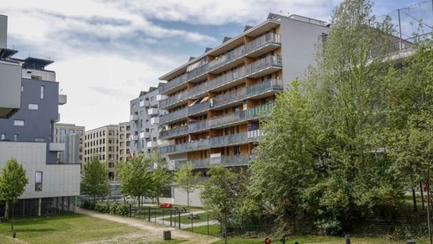 Im vergangnen Jahr sank das Fördervolumen im Wohnbau auf 112 Millionen Euro ab. (Bild: Tschepp Markus)