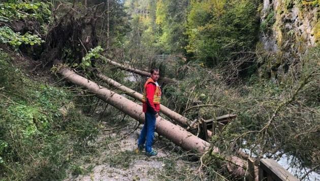 Sturmschäden in Schladming (Bild: Feuerwehr/Bergrettung Schladming)