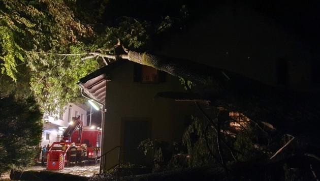 Ein Baum stürzte in Dietersdorf am Gnasbach auf ein Einfamilienhaus. (Bild: Presseteam BFVRA / Konrad)