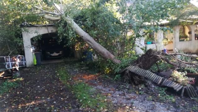 In Neusiedl bei Güssing stürzte ein Baum auf eine Garage. (Bild: Schulter Christian)