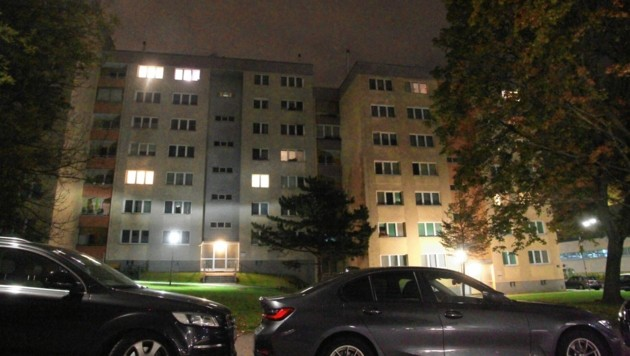 In einer Wohnung in der Per-Albin-Hansson-Siedlung in Favoriten stießen Polizisten auf zwei Leichen. (Bild: Andi Schiel)