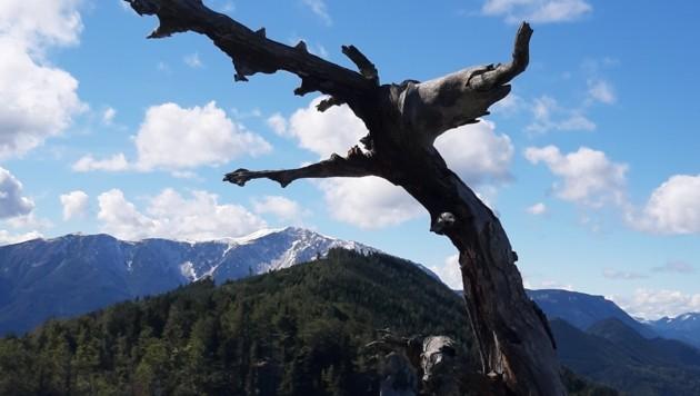 Ein Schnappschuss vom Schneeberg von der Gauermannhütte bei schönstem Herbstwetter. (Bild: Leserreporter/ Jochen S. )