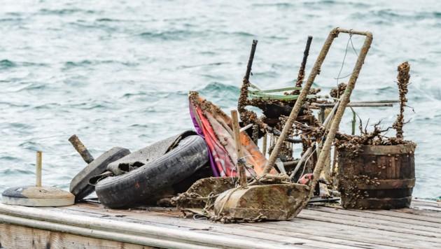 Die Taucher brachten allerhand Müll an die Oberfläche. (Bild: Wolfgang Simlinger)