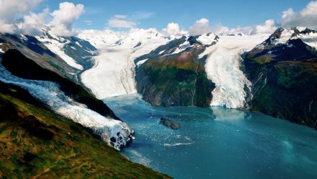 Der Prinz-William-Sund in Alaska mit seinen drei Gletschern (Bild: ©Madeleine Deaton - stock.adobe.com)