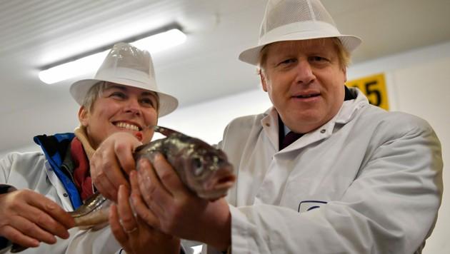 Premier Boris Johnson wird womöglich nicht ganz zufrieden stellende Fischfangquoten verteilen. (Bild: APA/AFP/POOL/Ben STANSALL)
