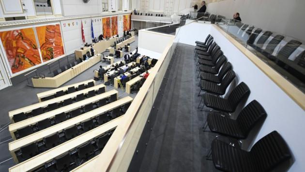 Der Bundesrat ist derzeit - wie der Nationalrat - im Parlamentsausweichquartier in der Wiener Hofburg angesiedelt. (Archivbild) (Bild: APA/Robert Jäger)