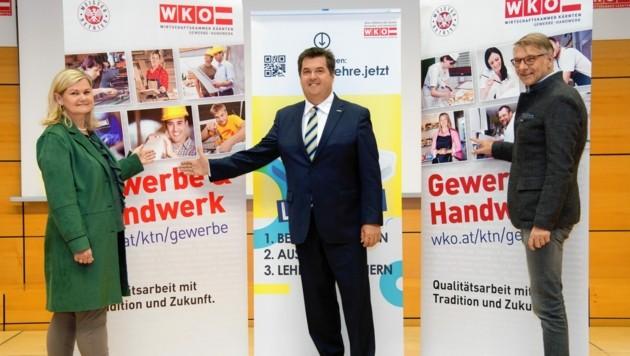 Branchensprecher: Mitterbacher, Kronlechner, Bredschneider. (Bild: WKK/Studiohorst)
