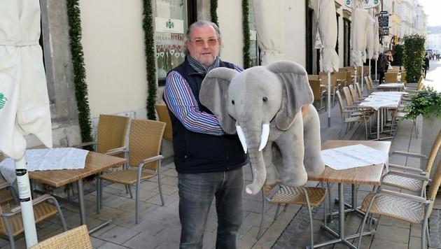 Jörg Leitner mit Babyelefant (Bild: Christian Jauschowetz)