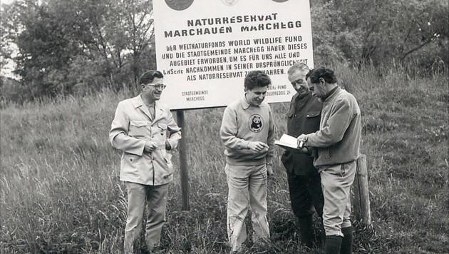 (Bild: WWF Österreich)