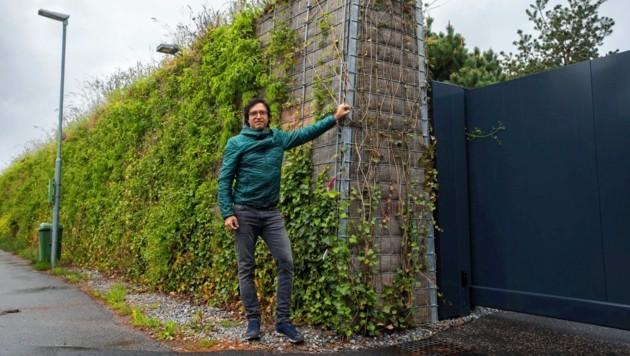 Geschäftsführer Stefan Gieselbrecht ist von den begrünten und ökologisch wertvollen Lärmschutzwänden überzeugt. (Bild: Grünkonzept Gieselbrecht GmbH)