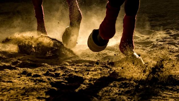 Erschrocken war ein Pferd wegen einer Geländeunebenheit, die Reiterin stürzte dadurch zu Boden und wurde verletzt (Bild: SilviuFlorin, stock.adobe.com)