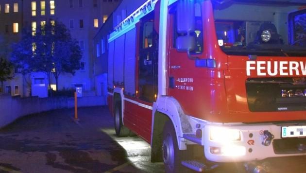 (Bild: LICHTBILDSTELLE MA 68, Feuerwehr Wien)