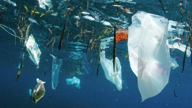 Laut einer alarmierenden Studie landet Österreichs Plastikmüll oft direkt im Meer. (Bild: Shutterstock / Shane Gross / WWF)