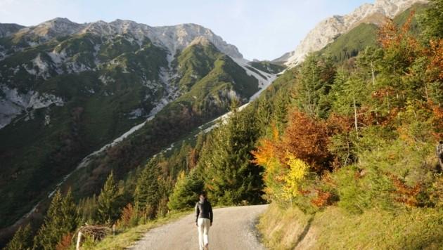 Farbenprächtiger Herbst (Bild: Peter Freiberger)