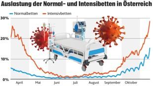 (Bild: Krone KREATIV; de.statista.com; stock.adobe.com)