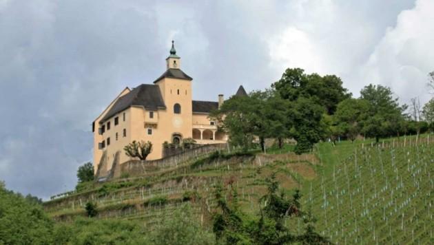 Schloss Thürn im Lavanttal. Das prachtvolle Anwesen mit umliegenden Weingärten wurde von Heidi Goëss-Horten erworben. (Bild: Gornik Immobilen)