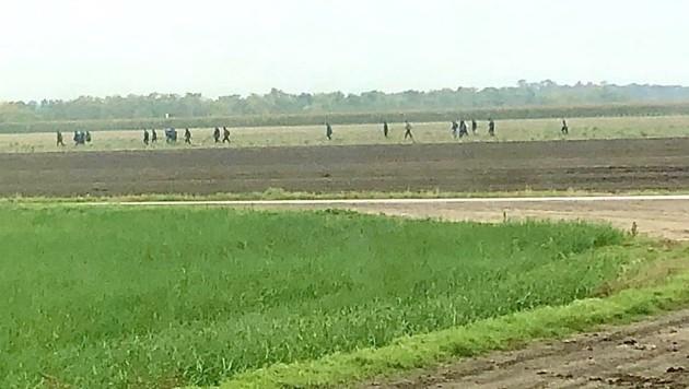 Flüchtlinge, die über einen Acker nahe Andau marschieren (Bild: Schulter Christian)