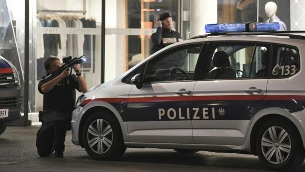 (Bild: APA/Roland Schlager)