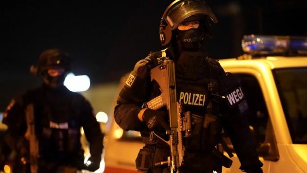Polizei am Schwedenplatz (Bild: APA/GEORG HOCHMUTH)