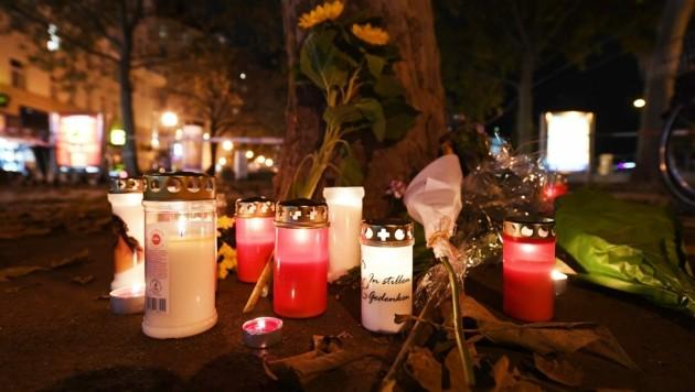 Der Experte betont, dass nicht viele Terroristen bereit seien wie der Attentäter von Wien ihr Leben zu opfern. (Bild: APA/HELMUT FOHRINGER)