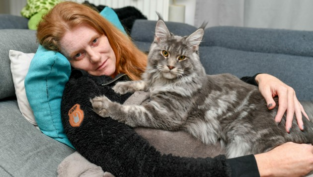 """Beate (40) ist vollgepumpt mit Schmerzmitteln, muss vor allem liegen. Trost findet sie bei Lebensgefährte Thomas (37), den drei Kindern und ihren zwei Katzen (im Bild Kater """"Da Vinci""""). (Bild: © Harald Dostal)"""