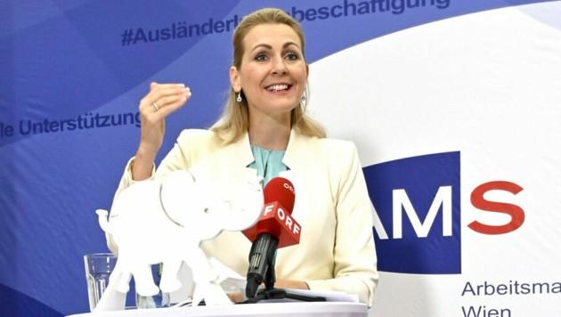 Arbeitsministerin Christine Aschbacher (Bild: APA/Herbert Neubauer)
