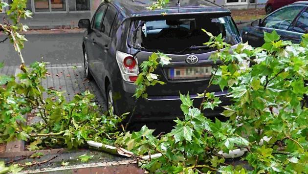 Sturm im September: Mehrere Äste eines hohen Baumes beschädigten den Pkw eines Lesers. (Bild: zVg, Krone KREATIV)