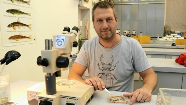 Herr über den DNA-Sequenzierer und andere Spezialgeräte: Biologe Stephan Koblmüller von der Karl-Franzens-Uni Graz. (Bild: Christian Jauschowetz)