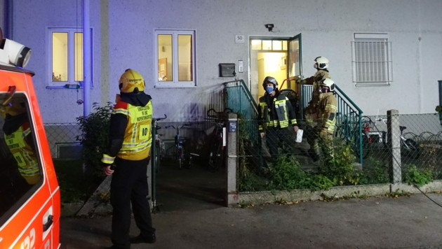 Die Linzer Feuerwehr am Einsatzort (Bild: BF Linz)