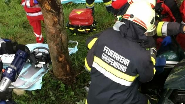 (Bild: Feuerwehr Greifenburg)