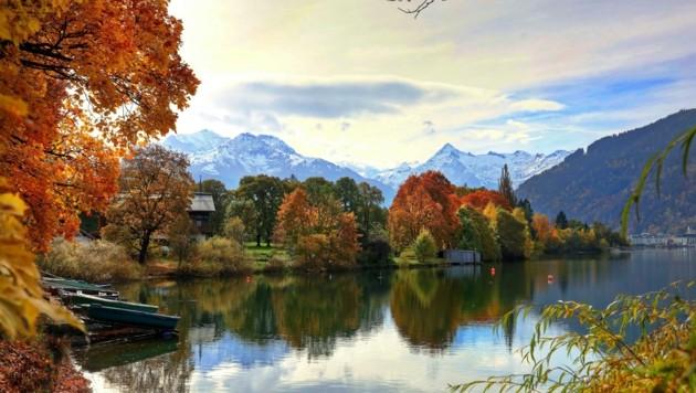 Die Pinzgauer genossen am vergangenen Wochenende den ruhigen Zeller See. (Bild: Roland Hölzl)