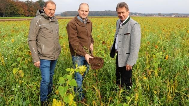 Lokalaugenschein bei Manfred Potzer (Mi.) mit den Kammergranden Franz Titschenbacher (re.) und Werner Brugner. (Bild: Christian Jauschowetz)