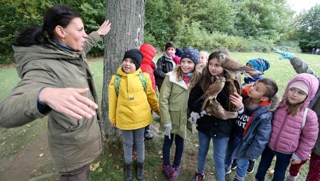 Der Naturpark Rosalia-Kogelberg will auch seinem Bildungsauftrag gerecht werden. (Bild: Reinhard Judt)