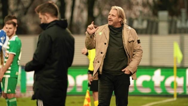 Hartberg-Trainer Markus Schopp (Bild: Sepp Pail)
