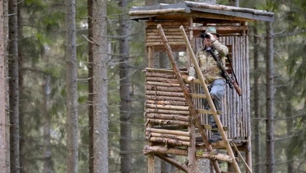 Das modernisierte Jagdgesetz – die Pläne der Landesregierung sind nicht unumstritten. (Bild: Wallner Hannes)