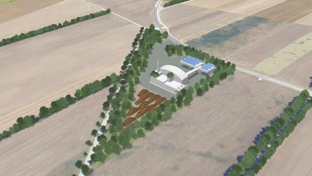 Das Biomasse-Kraftwerk soll künftig im Grünland stehen (Bild: EVN)
