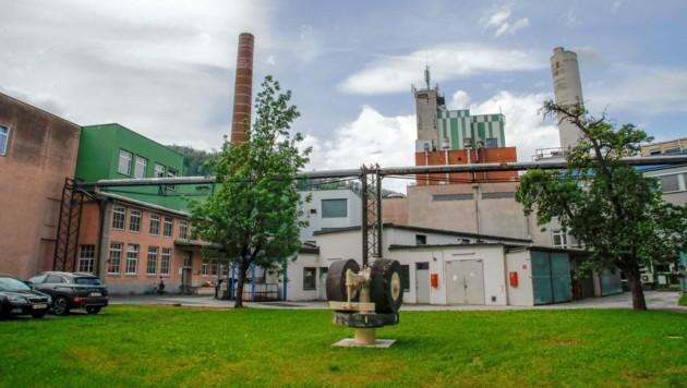 Der Firmensitz von AustroCel in Hallein (Bild: Markus Tschepp)