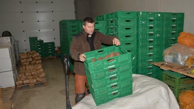 Biobauer Christian Kopp bereitet das Verschenken von 2000 kg Süßkartoffel vor
