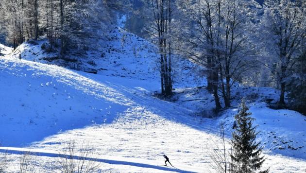 Ein Langläufer am Samstag in Hochfilzen (Tirol) (Bild: APA/BARBARA GINDL)