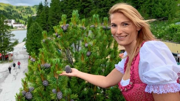 Christina Brandstätter bei der Ernte vor Wintereinbruch.