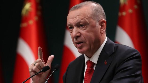 Präsident Recep Tayyip Erdogan blieb Details schuldig, in welche Richtung seine Demokratiereform gehen wird.