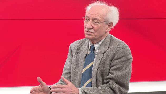Pensionsexperte Bernd Marin (Bild: krone.tv)