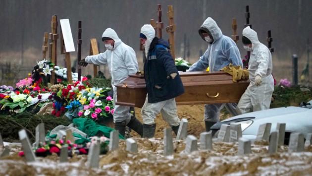 Totengräber bei St. Petersburg tragen den Sarg eines Corona-Opfers. (Bild: AP)