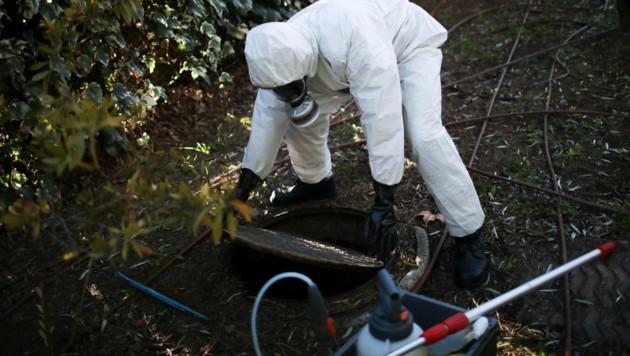 Auch in Frankreich werden Proben aus dem Abwasser entnommen, um möglicherweise die britische Coronavirus-Mutation nachzuweisen. (Bild: AP)