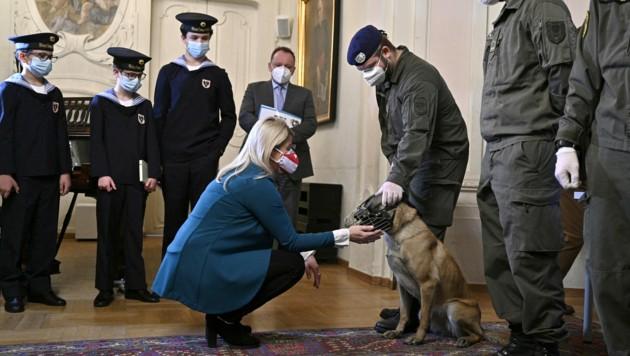 Wiener Sängerknaben, Verteidigungsministerin und ein Corona-Spürhund des Bundesheeres (Bild: APA/Hans Punz)